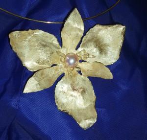 Iris con perla